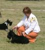 Special Terrier show in Friedberg, Germany